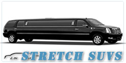 Phoenix wedding limo