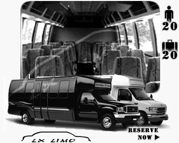 Phoenix Mini bus for hire in Ontario