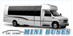 Mini Bus rental in Phoenix, AZ